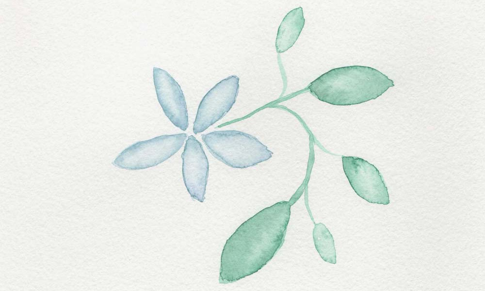 Blumen Aquarellmalen für Anfänger und Fortgeschrittene Online