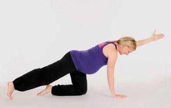 Fit in der Schwangerschaft (für alle Trimester) Online Kurs
